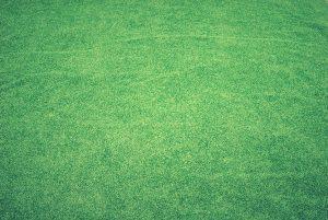 6 redenen waarom kunstgras perfect is voor jouw tuin
