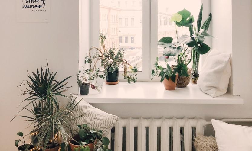 Tips om de luchtvochtigheid in huis te verminderen