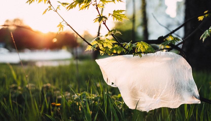 Milieuvriendelijke tassen en het verbod op gratis plastic tassen